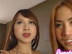 These sultry Asian ladyboys bend over to expose their tender buttholes