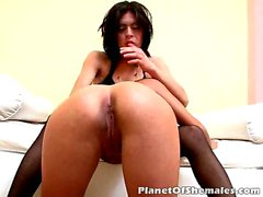 Lovely brunette shemale whores Brenda And Maria having fun