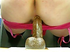 cowgurl riding my hard bbc