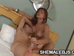Brunette shemale Hilda Brasil giving a fantastic blowjob